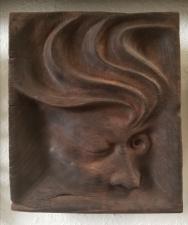"Not yet titled - 9.5""x8.5""x2"" - reclaimed mahogany- $500"